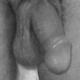 skshajal