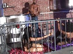 Black dude fucking his sex slaves in the fucking cage