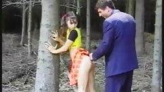 Pn иди в лес и получи немного радости!